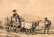 Woman and child in traditional dress riding on a cart full of sacks.  The cart is being pulled by two cows who are being gently prodded by the carter.  Near Tarbes in the French Pyrenees.  Tinted lithograph from 'Nouvelles Suite de Costumes des Pyrenees' (Paris, c1840).