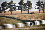 Amish man rides a bicycle in Gordonville, PA.