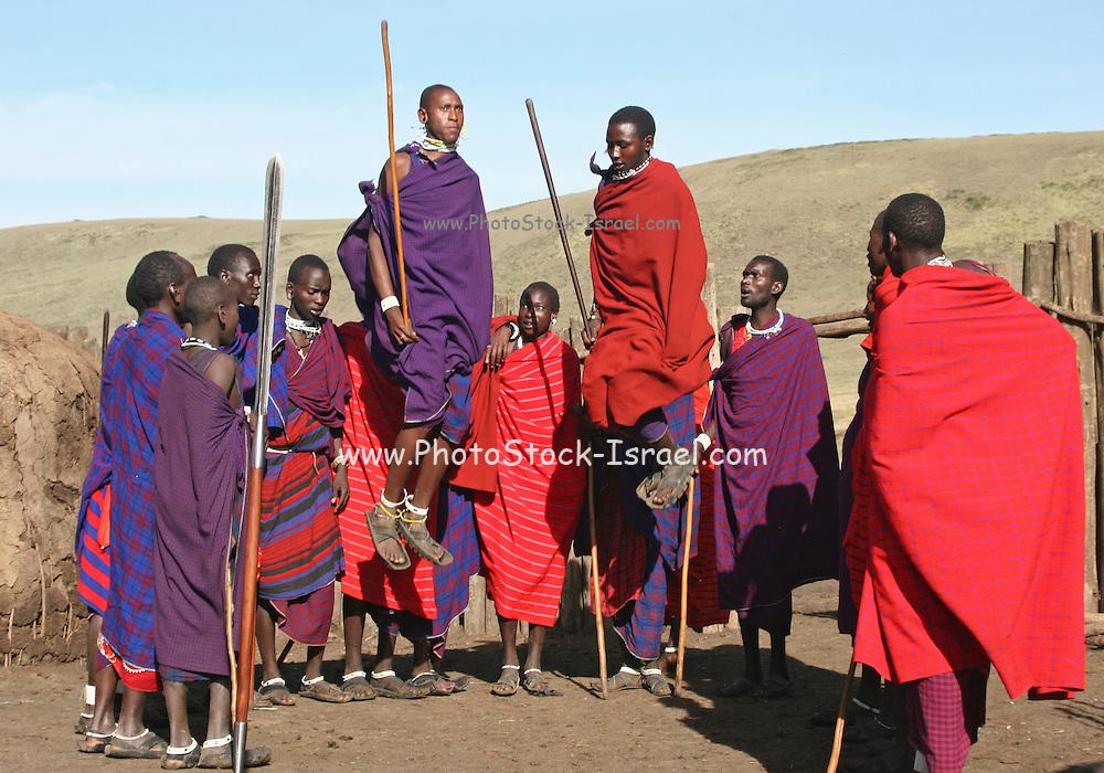 Africa, Tanzania, Maasai an ethnic group of semi-nomadic people February 2006