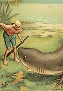 A shark on land From the book Mr. Munchausen; being a true account of some of the recent adventures beyond the Styx of the late Hieronymus Carl Friedrich, sometime Baron Munchausen of Bodenwerder, as originally reported for the Sunday edition of the Gehenna Gazette by its special interviewer the late Mr. Ananias formerly of Jerusalem and now first transcribed from the columns of that journal. by Bangs, John Kendrick, (1862-1922) Published in Boston by Noyes, Platt & company 1901 with artwork by Peter Newell
