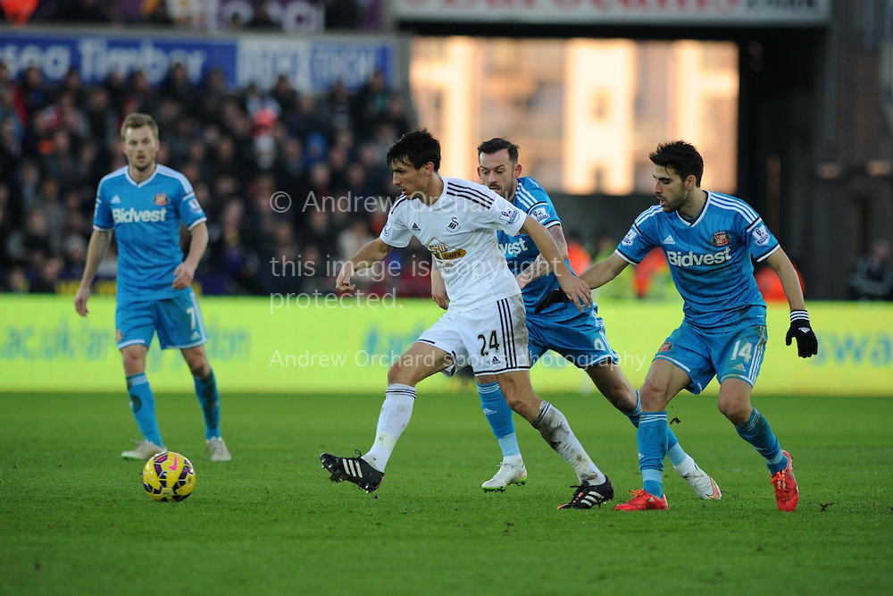 Swansea city's Jack Cork holds off Sunderland's Steven Fletcher © and Jordi Gomez (14).Barclays premier league match, Swansea city v Sunderland at the Liberty stadium in Swansea, South Wales on Saturday 7th Feb 2015.<br /> pic by Andrew Orchard, Andrew Orchard sports photography.
