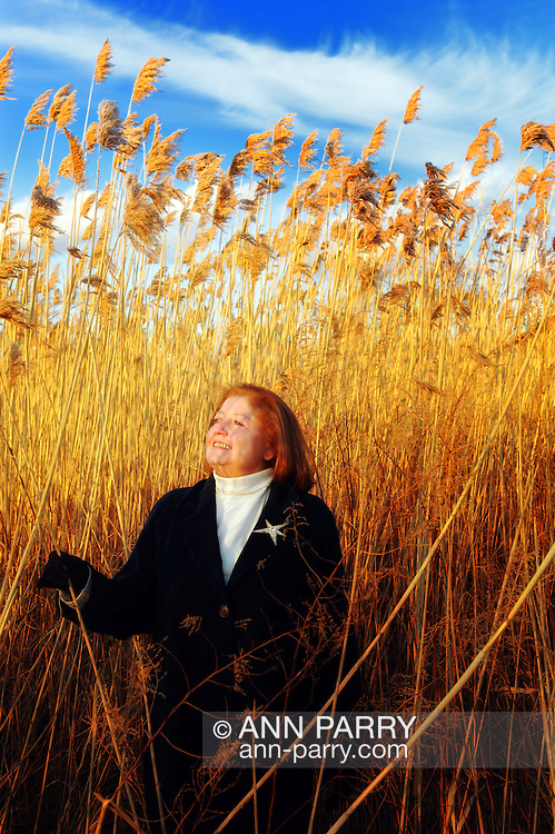 Woman in tall golden reeds at dusk, at Levy Park in Merrick, Long Island, New York, USA