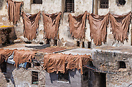 Tanned animal skill hanging on wall to dry. Tannery of Fès, Morocco.