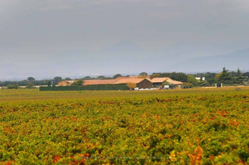 The Domaine de Beaucastel and vineyards. Chateau de Beaucastel, Domaines Perrin, Courthézon Courthezon Vaucluse France Europe