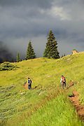 Trail to Cater Lake at the base of the Twighlight Peaks, West Needle Mountains, San Juans, Colorado.