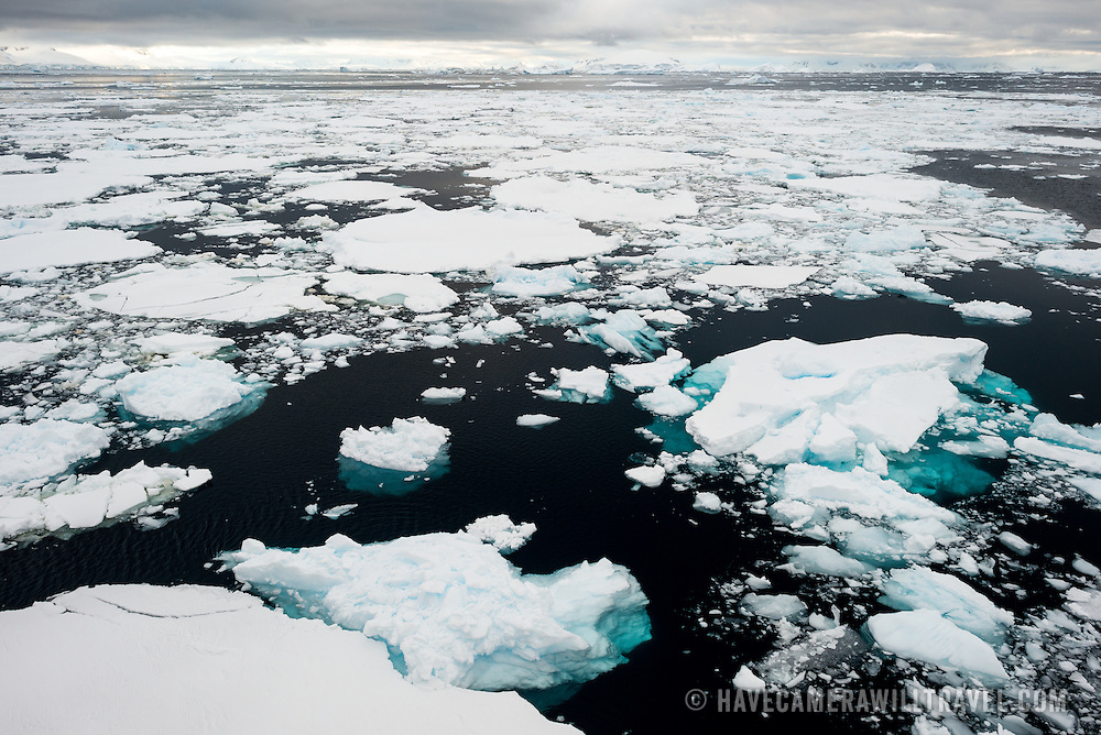 Sea ice on the surface of the water in the Lemaire Channel along the western side of the Antarctic Peninsula.