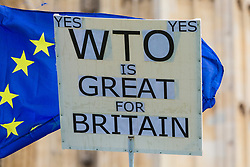 Some in the UK are convinced that the country can do better trading with the rest of the world under WTO rules. London, January 14 2019.