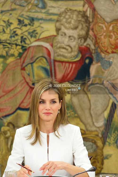 Queen Letizia of Spain attends a Meeting of the Council of the Royal Board on Disability at Palacio de la Zarzuela on September 9, 2014 in Madrid