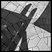 Shadows on patio