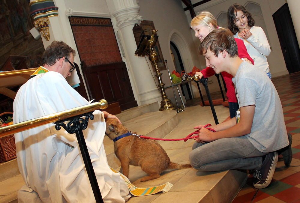 Pet Blessing Service at St Stephen's Church, College Road in Dulwich.