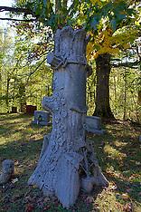 other graveyards Photos