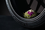 Branding photos for food designer<br /> <br /> See the Michelin & Me project here:<br /> https://www.vahidmortezaei.com/michelin-and-me<br /> <br /> Read the story here:<br /> https://www.vahidmortezaei.com/blog/2019/6/2/michelin-and-me