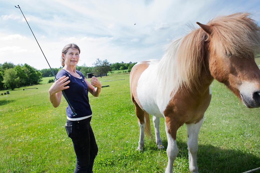 Coaching og leder udvikling med Heste