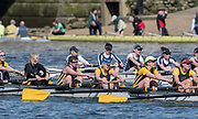 Mortlake/Chiswick, GREATER LONDON. United Kingdom. Ardingly Rowing Club. W.MasD.8+, competing in the 2017 Vesta Veterans Head of the River Race, The Championship Course, Putney to Mortlake on the River Thames.<br /> <br /> <br /> Sunday  26/03/2017<br /> <br /> [Mandatory Credit; Peter SPURRIER/Intersport Images]
