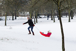 © Licensed to London News Pictures . 26/01/2013 . Salford , UK . A woman pulls a child on a sled through the fresh snow . People enjoy fresh overnight snow this morning (26th January 2013) in Buile Hill Park , Salford . Photo credit : Joel Goodman/LNP