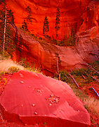Sandstone and Canyon Wall, Kolob Canyons, Zion National Park, Utah