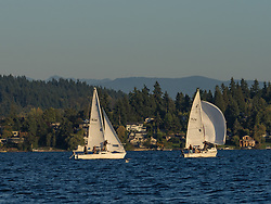 United States, Washington, Bellevue, sailboats on Lake Washington