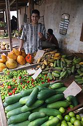 Vegetables on stall in Farmers' Market in Havana,