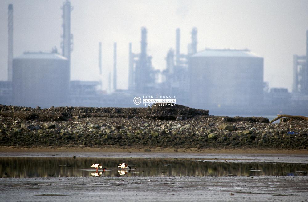 Oil terminus; Seal Sands Teesside UK