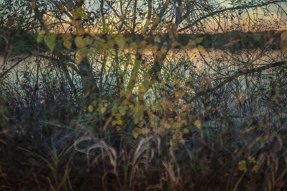 Landscape photograph, multiple exposure of autumn trees along the backwater of Myrick Park.