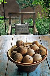 A simple bowl of buffalo gourds perfectly accentuates a country table.