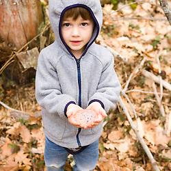 A boy holds salamander eggs near Gulf Brook Ravine in Pepperell, MA.