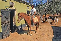David On Horse (Duke) During Great Zimbawe Safari