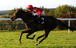She Believes ridden by David Egan wins THe Chichester Observer Nursery Handicap Stakes Race run at Goodwood Racecourse, Chicester. PRESS ASSOCIATION Photo. Picture date: Friday August 25, 2017. See PA story RACING Goodwood. Photo credit should read: Julian Herbert/PA Wire.