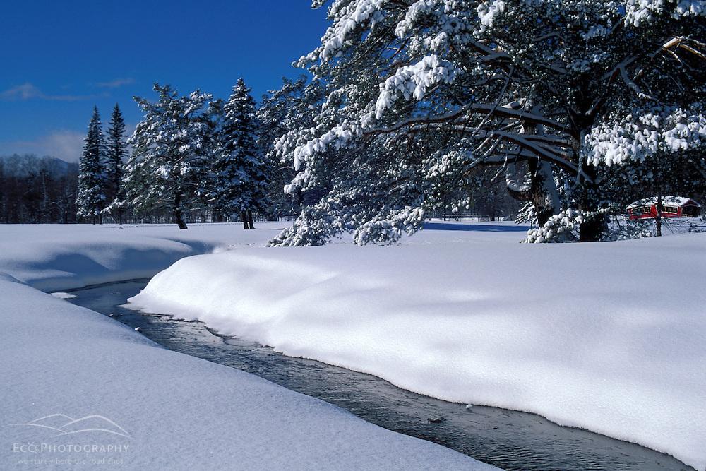 Winter Scenics. Streams. White Mountains.  March.  Jackson, NH