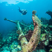 A scuba diver inspects the massive anchor of the cargo vessel the Cienfuego which sank in 1895 in The Bahamas.