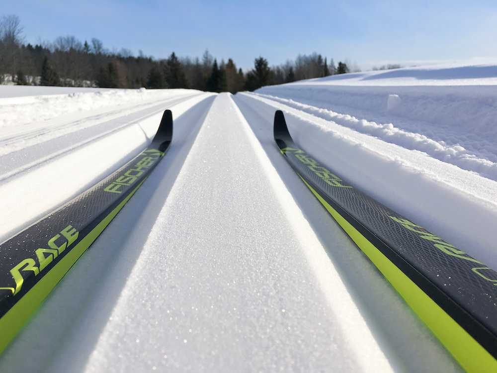 Cross-country ski tracks in fresh snow on Michigan's Upper Peninsula.