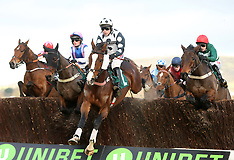 The International - Day Two - Cheltenham Racecourse - 16 December 2017