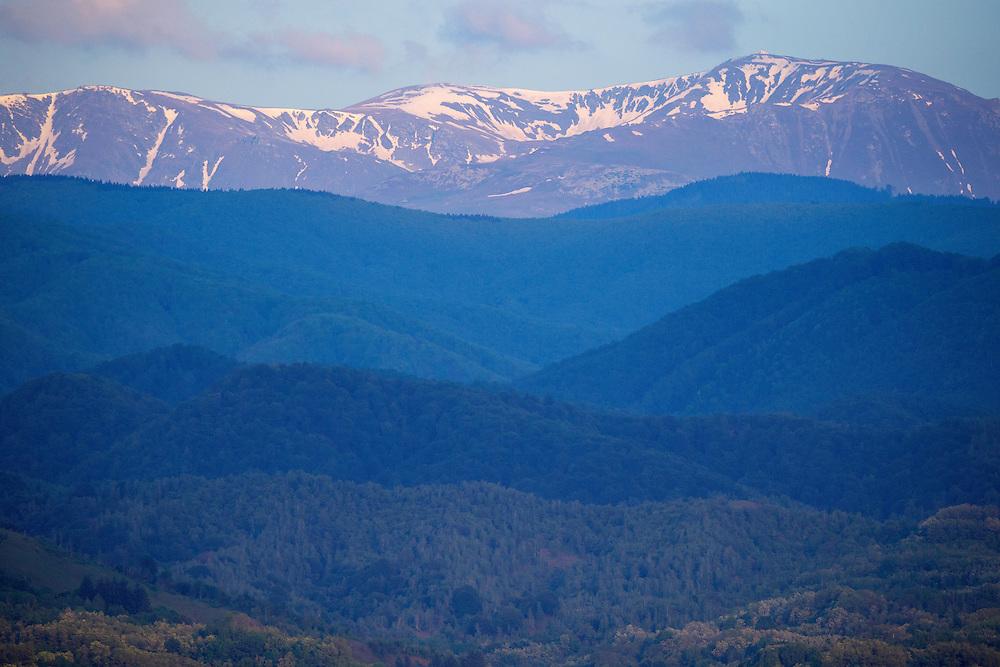 Tarcu mountains nature reserve, Natura 2000 area, Southern Carpathians, Romania.
