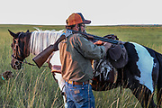 John Zeman straps downed sharptails to his saddle during a Montana prairie grouse hunt.