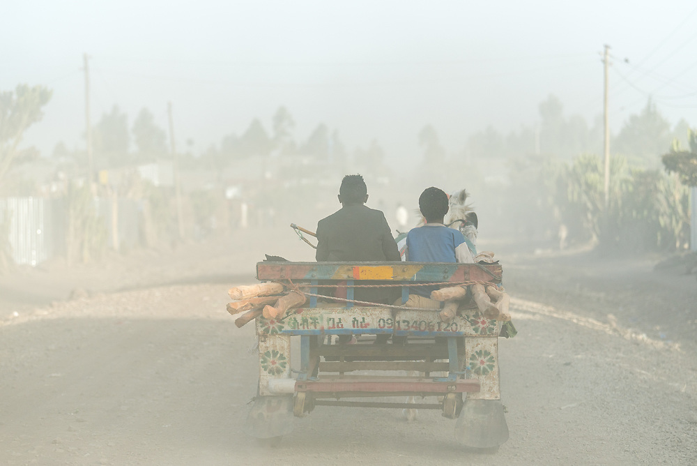 26 January 2019, Ethiopia: Two boys ride a horse-led carriage through the dust-filled streets in Bale Zone, Oromia region, Ethiopia.