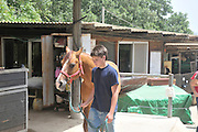 Israel, Ben Oron aged 14 walking his horse DJ at the stable at Kibbutz Alonim before the Israeli Equestrian Organization western style Reining competition. Model and Property releases available