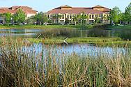 Southwest Florida neighborhood condo development with pond in Manatee County near Sarasota.