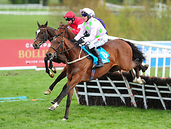 Saldier ridden by Robbie Power (front) win the AES Champion Four Year Old Hurdle during day five of the Punchestown Festival 2018 at Punchestown Racecourse, County Kildare.