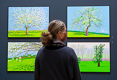 David Hockney Exhib 18th May 2021