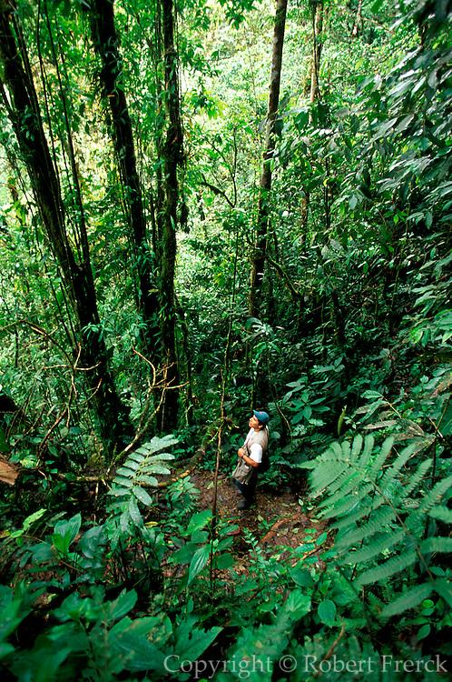 ECUADOR, HIGHLANDS Bosque Mindo-Nambillo cloud forest