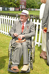 The HON.MARK VESTEY at the Cartier Queen's Cup Polo final at Guard's Polo Club, Smiths Lawn, Windsor Great Park, Egham, Surrey on 14th June 2015