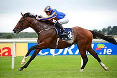 FILE: Churchill Horse