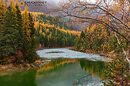 North Fork of the Flathead River in autumn in Glacier National Park, Montana, USA