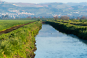 Israel, Hula Valley, The River Jordan as it passes through the Hula Valley Photographed in the winter