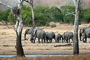 The Tent Lodges of Kruger National Park, South Africa