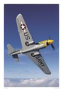 P-40 Warhawk, US Army, aerial