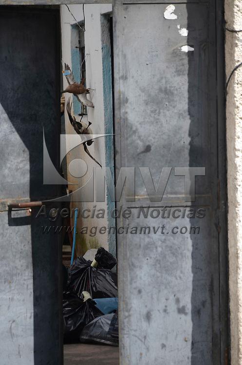 Toluca, México.- Verificadores de la Profepa realizaron un operativo en un inmueble ubicado en el barrio de San Bernardino, donde se localizaron pieles de animales exóticos como tigre de Bengala, leopardo y cebra. Agencia MVT / Arturo Hernández.