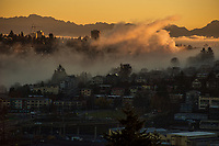 Foggy Morning Sunrise, Queen Anne & Interbay