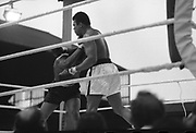 Ali vs Lewis Fight, Croke Park,Dublin.<br /> 1972.<br /> 19.07.1972.<br /> 07.19.1972.<br /> 19th July 1972.<br /> As part of his built up for a World Championship attempt against the current champion, 'Smokin' Joe Frazier,Muhammad Ali fought Al 'Blue' Lewis at Croke Park,Dublin,Ireland. Muhammad Ali won the fight with a TKO when the fight was stopped in the eleventh round.<br /> <br /> Near the end of the bout Ali is pictured in complete control.