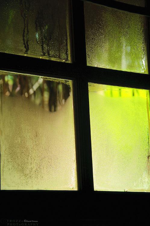 Condensation on glass window